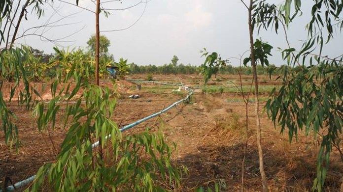 ท่อน้ำที่ชาวบ้านสูบน้ำจากหนองไปใช้ทำการเกษตร