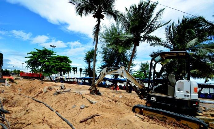 การรื้อถอนต้นมะพร้าวตามแนวทางเดิน (เขตปลอดหาดดงตาล)