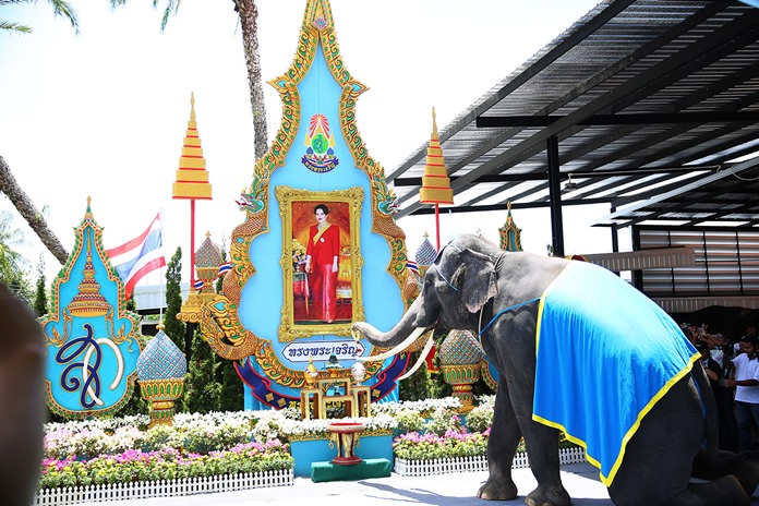 สวนนงนุชพัทยา นำช้างแสนรู้ถวายพระพรแม่ของแผ่นดิน 12 สิงหามหาราชินี
