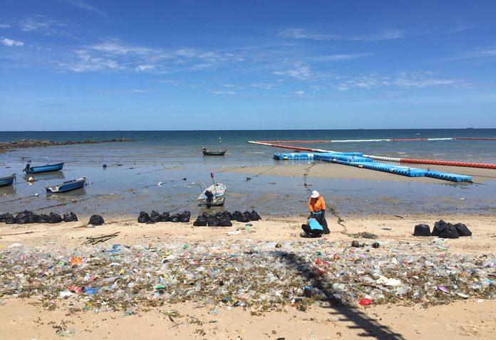 เมืองพัทยาส่งเจ้าหน้าที่สำนักสิ่งแวดล้อม ลงพื้นที่เก็บขยะ บริเวณชายหาดวงศ์อมาตย์ นาเกลือ เมืองพัทยา