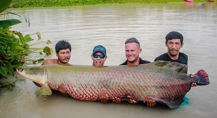 ไฮไลท์ของงานแกรนด์โอเพนนิ่ง  มีการปล่อยปลาช่อนอาเมซอล ขนาด 4 คนอุ้ม ยาวเกือบ 3 เมตร ลงภายในบ่อ