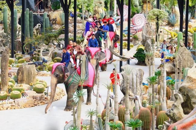 สวนนงนุชพัทยา จดทะเบียนคู่รักบนหลังช้าง 99 คู่ วันวาเลนไทน์ กลางหุบเขาไดโนเสาร์