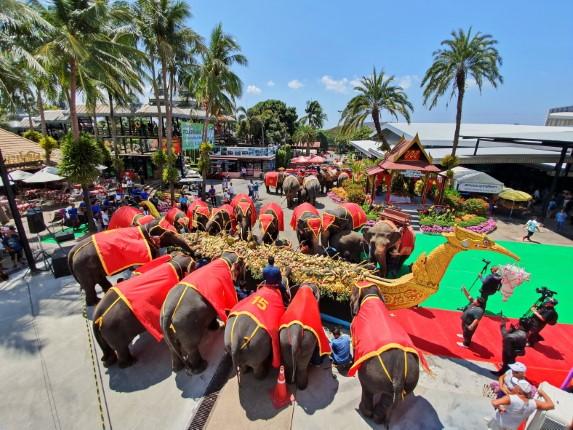 ยิ่งใหญ่! สวนนงนุชพัทยา จัดโต๊ะจีนผลไม้เฉลิมฉลองช้าง 87 เชือก วันช้างไทย