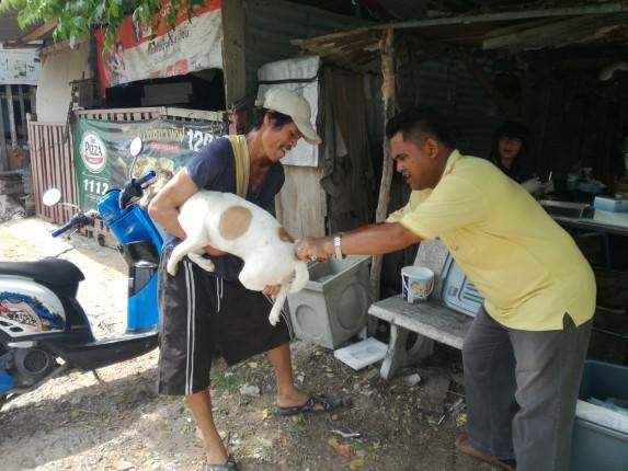 เมืองพัทยา ออกหน่วยบริการประชาชนชุมชนอรุโณทัย ทำหมันฉีดวัคซีนสุนัขและแมวฟรี