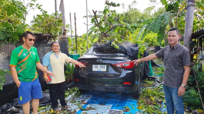 ภารโรงโชคร้าย ประกันภัยหมด 2 อาทิตย์ ฝนถล่มต้นไม้-เสาไฟ หักโค่นทับรถยนต์เสียหาย 3 คัน
